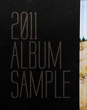 ALBUM SAMPLE