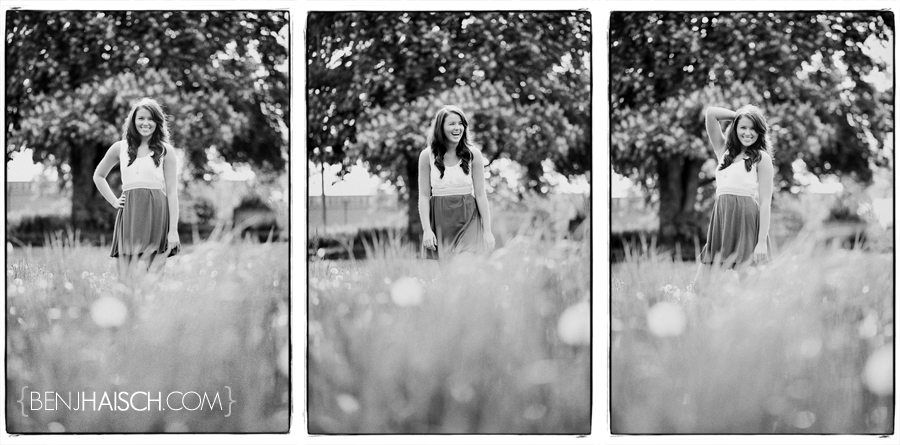 tessa-triptych1 2009 YEAR IN REVIEW