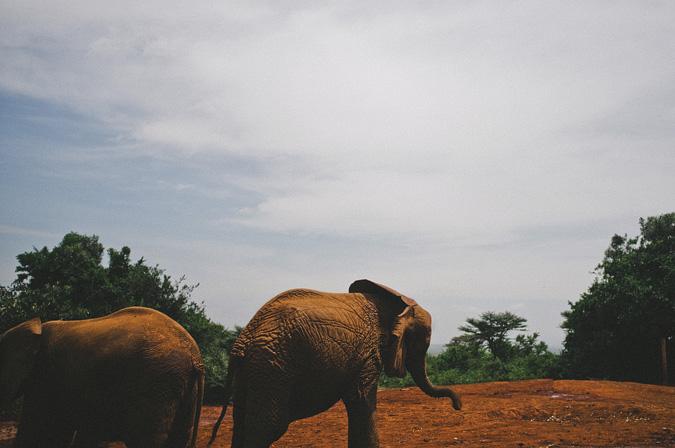 NAIROBI_2011-016 NAIROBI