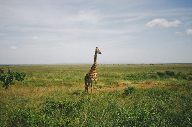 NAIROBI_2011-019 NAIROBI