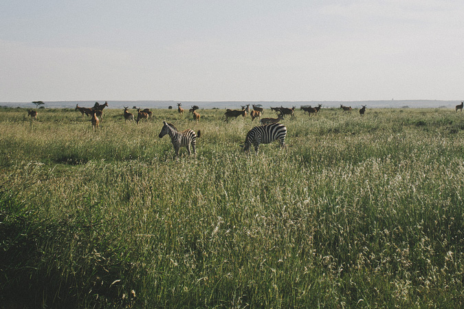 NAIROBI_2011-025 NAIROBI