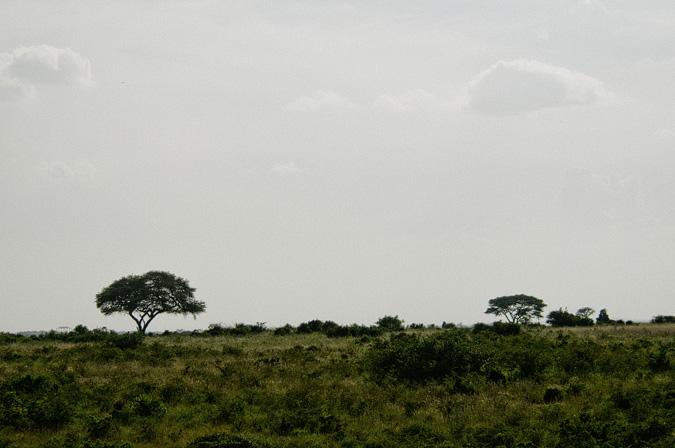 NAIROBI_2011-033 NAIROBI