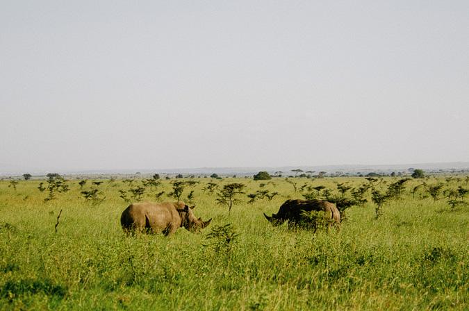 NAIROBI_2011-042 NAIROBI