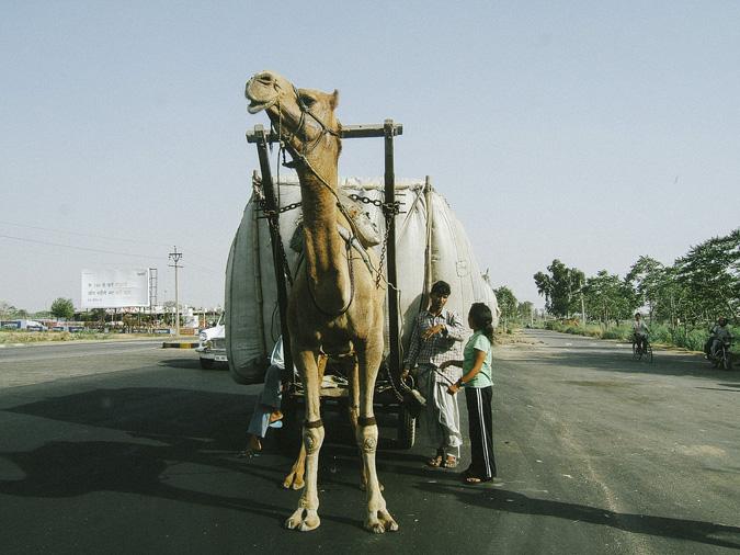 india-75 INDIA // 2005