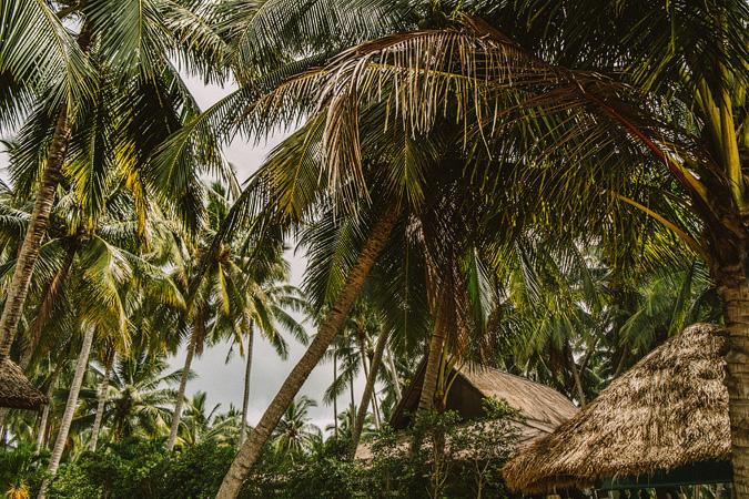 THAILAND-CAMBODIA-TURKEY-085 THAILAND