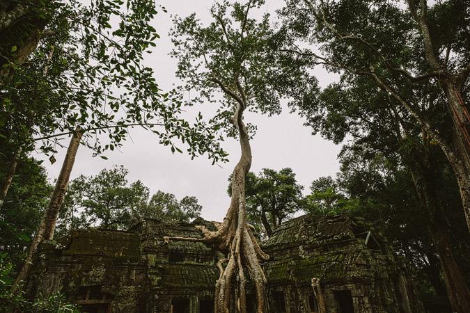 THAILAND-CAMBODIA-TURKEY-165 CAMBODIA
