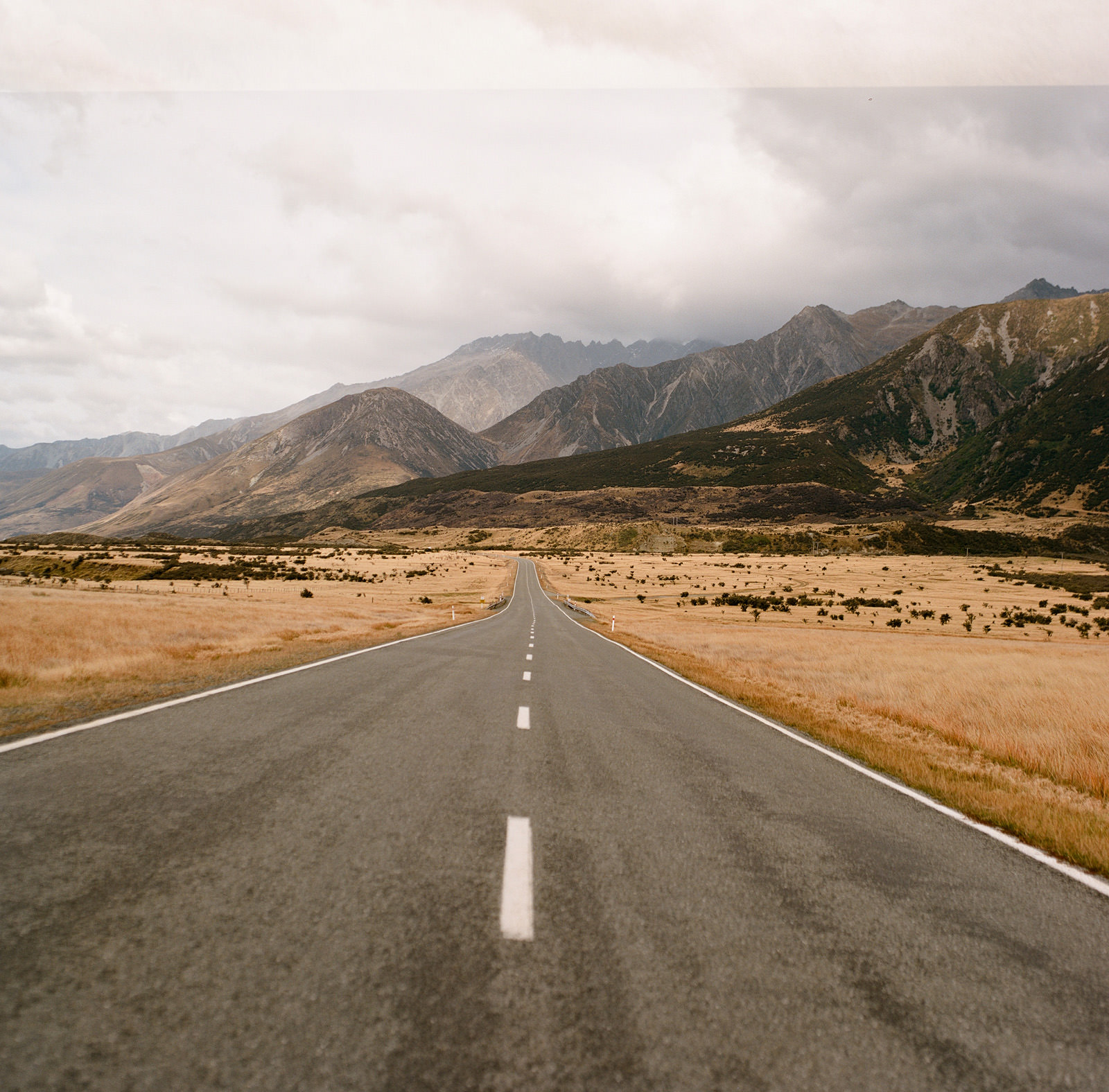 nz-501 NEW ZEALAND