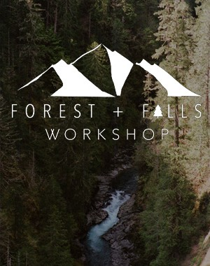 FOREST+FALLS