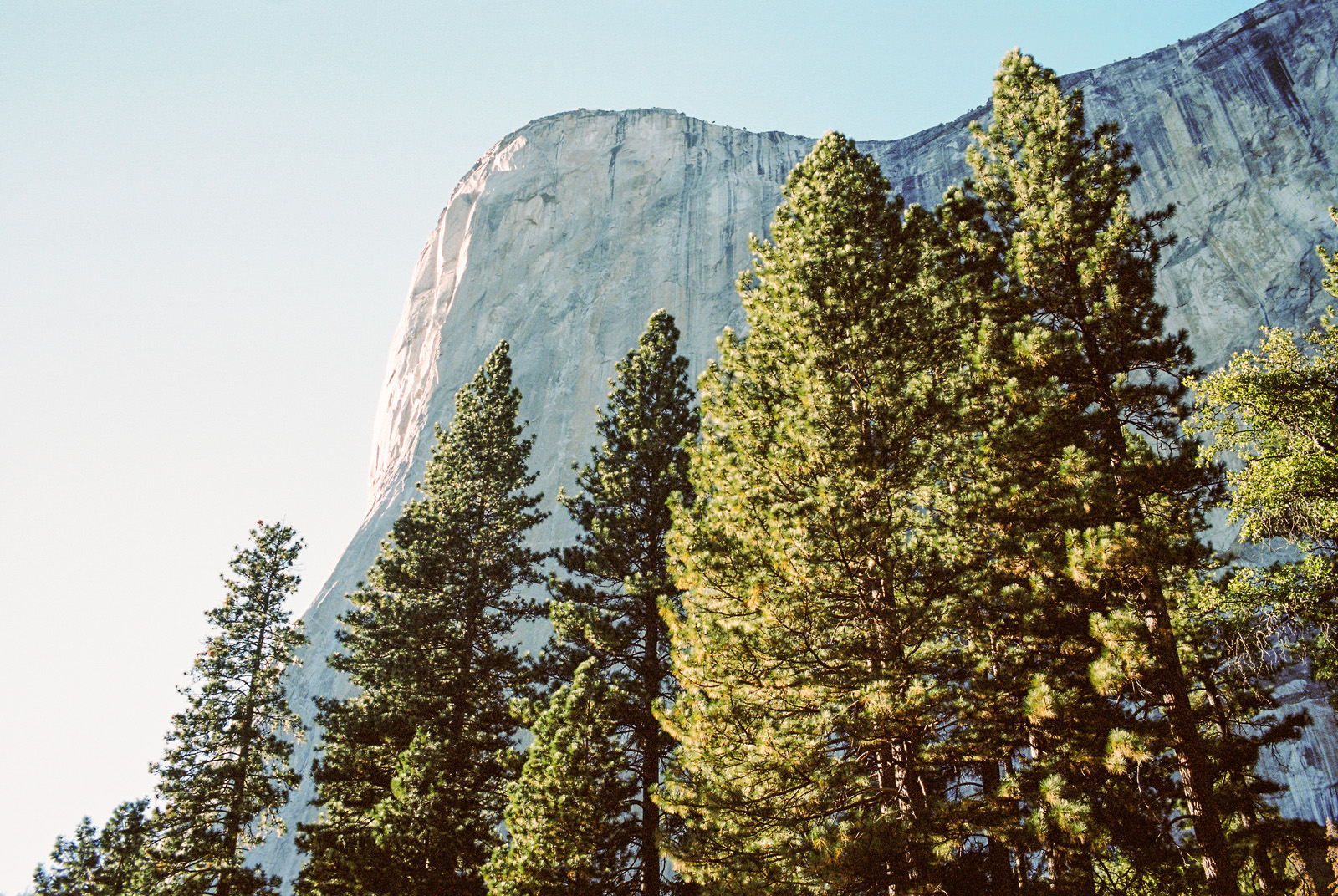 erinkyle-blog-02 YOSEMITE ELOPEMENT
