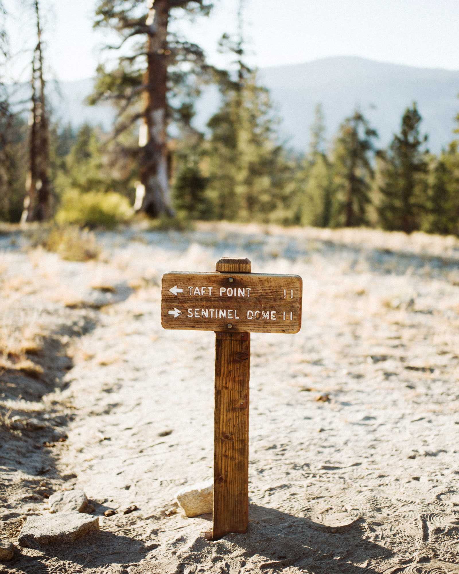 erinkyle-blog-29 YOSEMITE ELOPEMENT