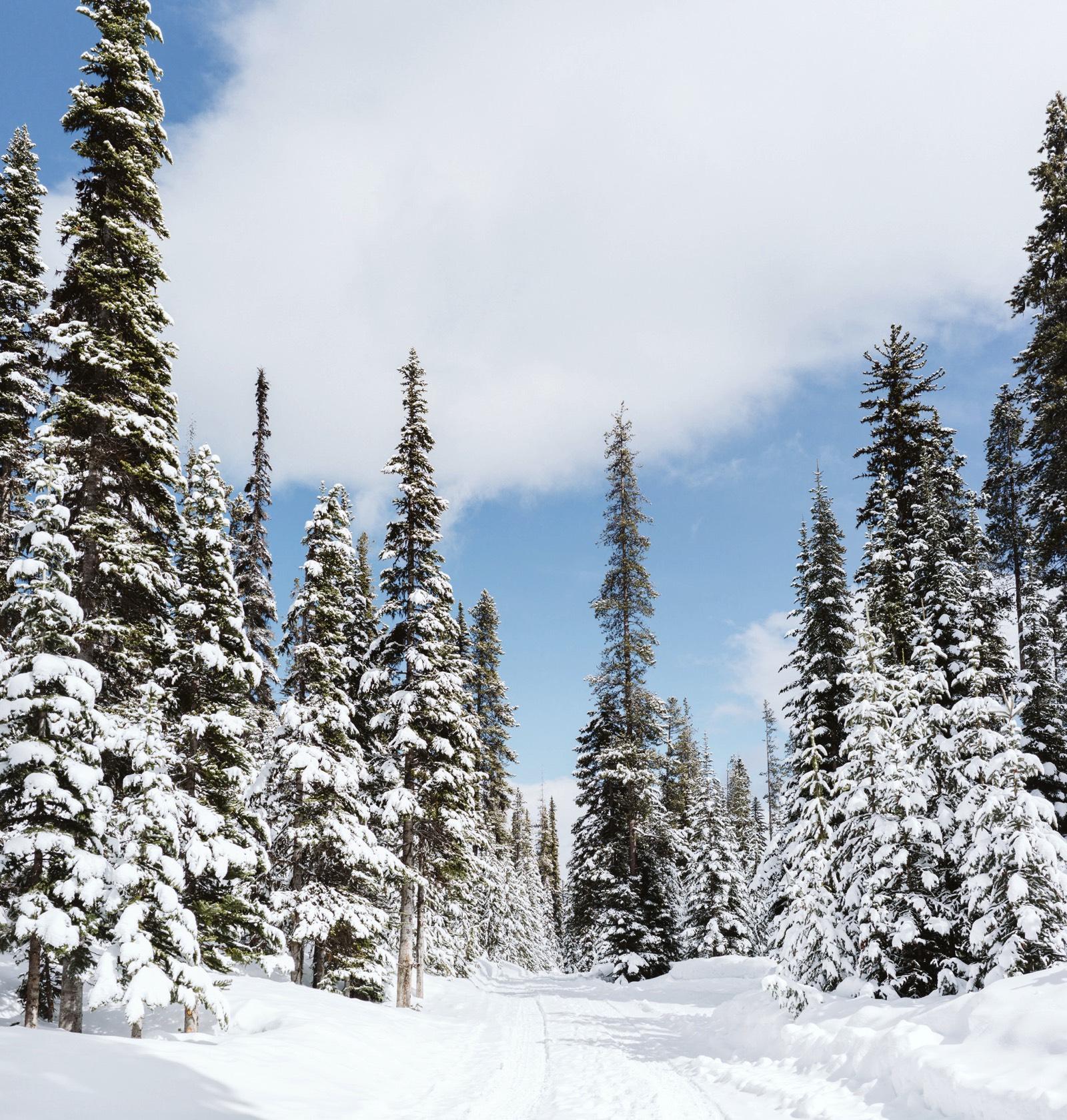 alpine-lakes-high-camp-winter-wedding-05 ALPINE LAKES HIGH CAMP WEDDING