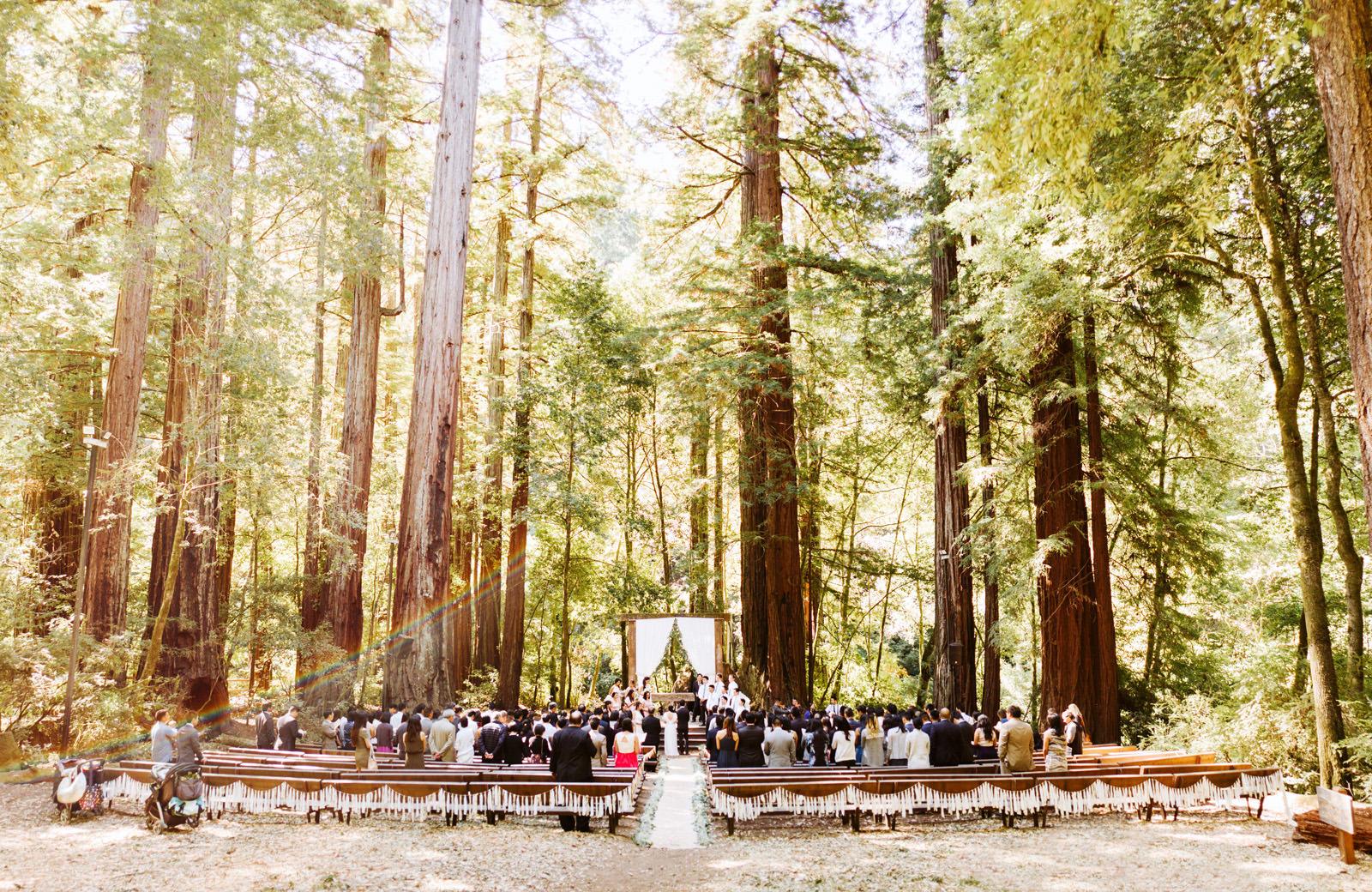 kimclay-blog-023 REDWOOD FOREST WEDDING