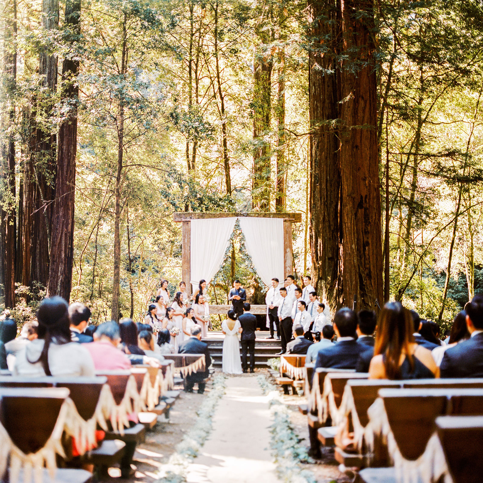 kimclay-blog-035 REDWOOD FOREST WEDDING