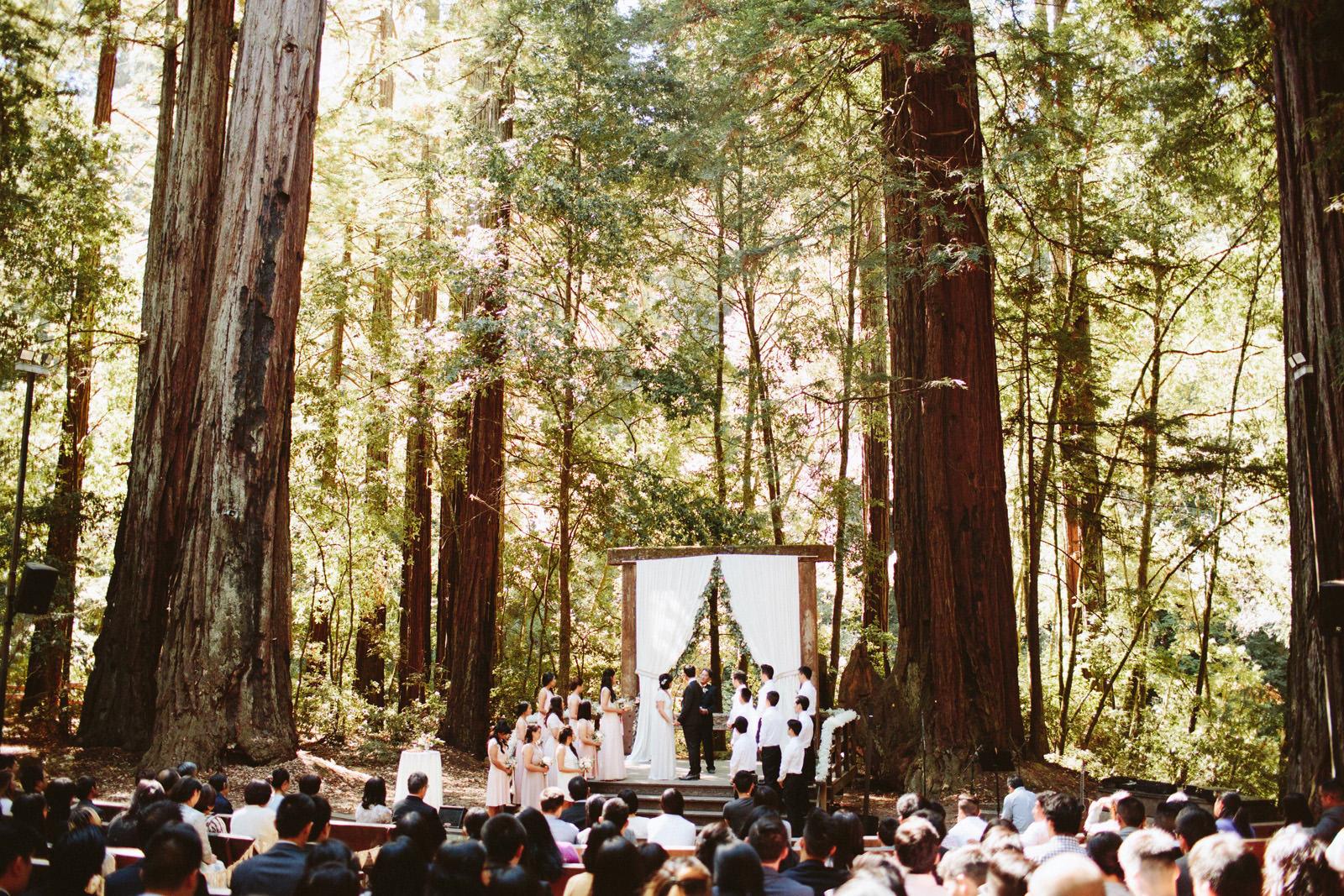 kimclay-blog-041 REDWOOD FOREST WEDDING