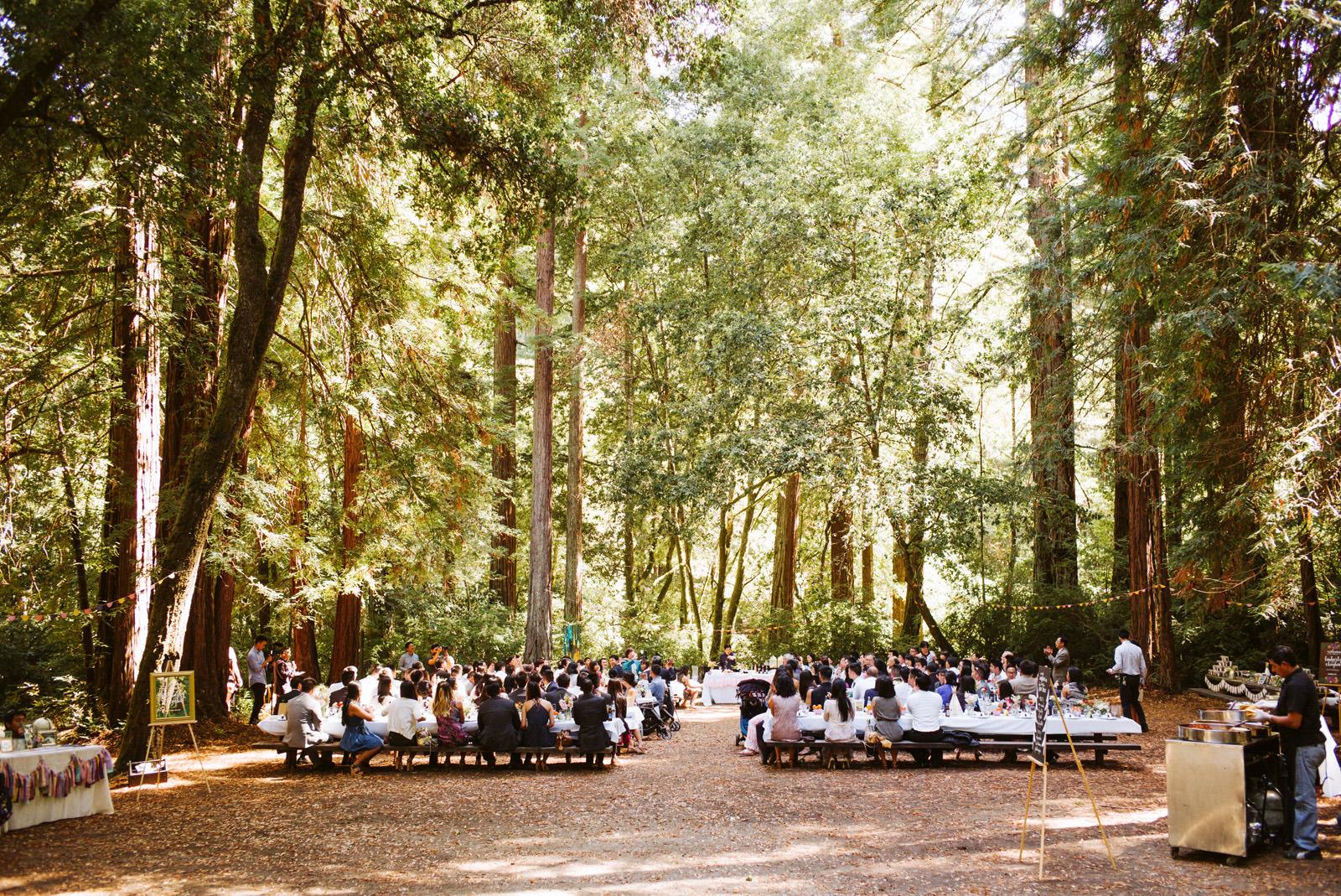kimclay-blog-062 REDWOOD FOREST WEDDING
