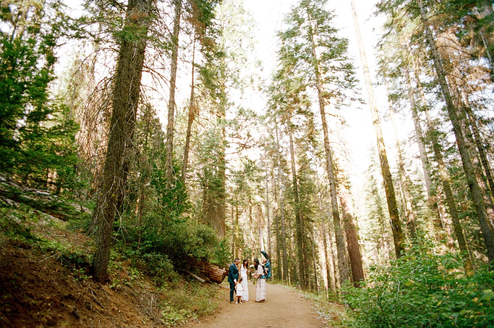 yosemite-intimate-wedding-038 YOSEMITE INTIMATE WEDDING