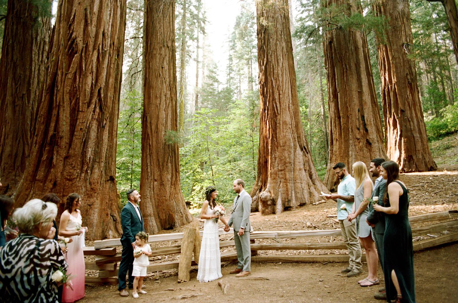 yosemite-intimate-wedding-049 YOSEMITE INTIMATE WEDDING
