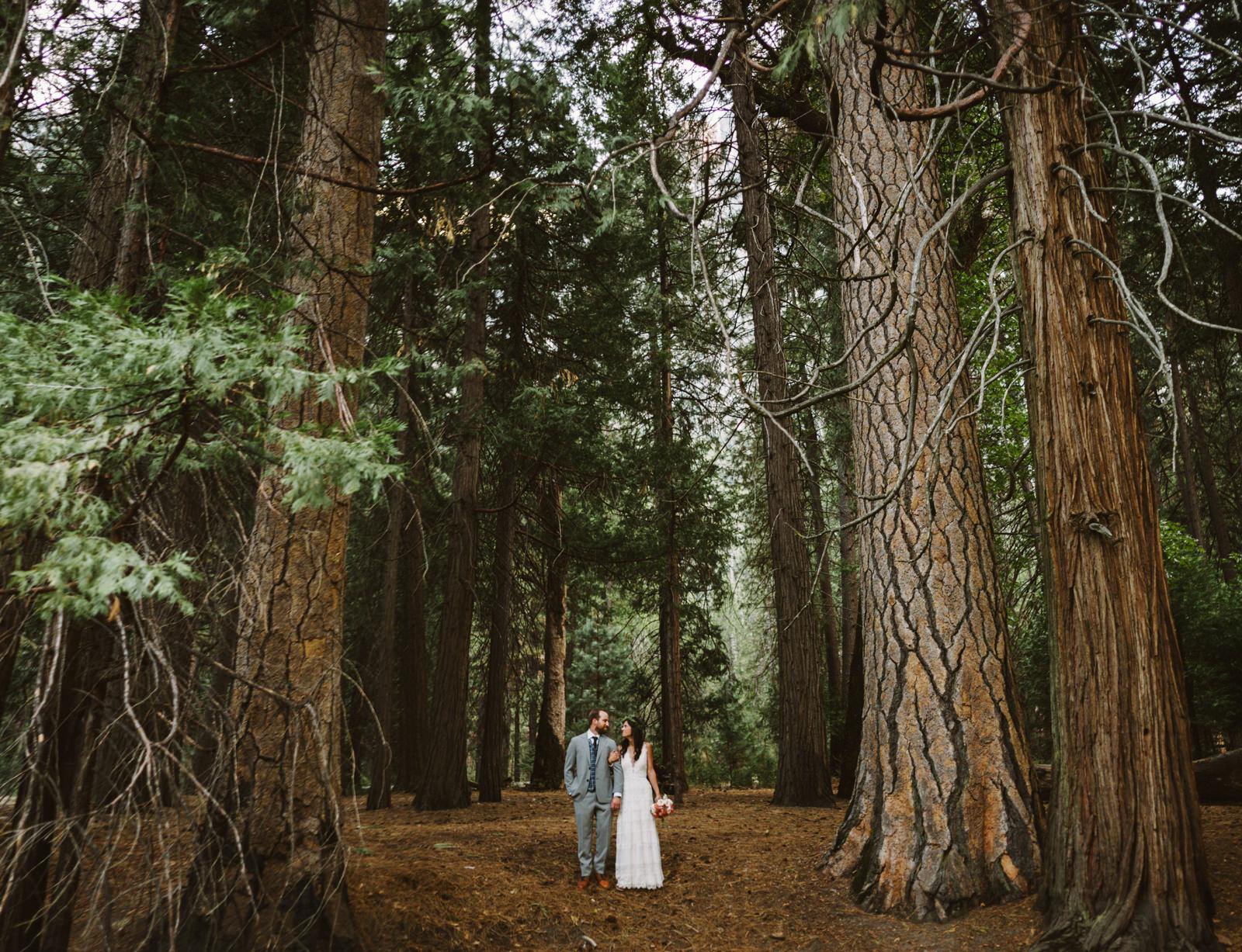 yosemite-intimate-wedding-102 YOSEMITE INTIMATE WEDDING