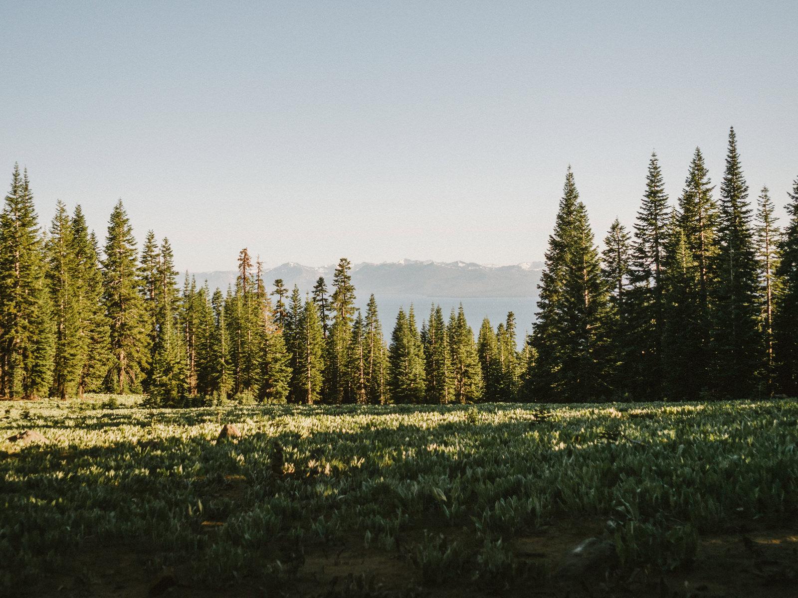 lake-tahoe-elopement-040 LAKE TAHOE ELOPEMENT